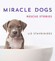 MiracleDogsCover